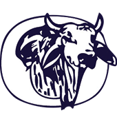 Okeechobee High School Logo